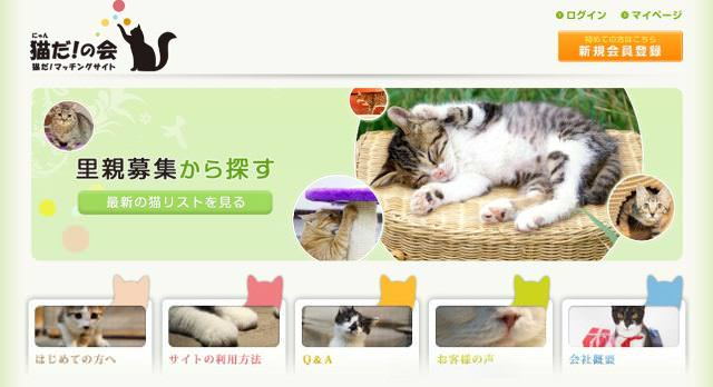 cat-nyanda-1_mini
